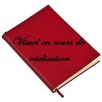 Règle du Jeu de Piquet. Piquet ordinaire ; Piquet à écrire ; Piquet Normand ; Piquet Voleur. Lois et conventions.