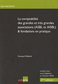 La comptabilité des grandes et très grandes associations (ASBL et AISBL) & fondations en pratique