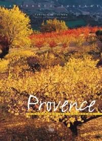 Provence : Paysages de lumière