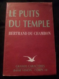 Le puits du temple (Collection Basse vision)
