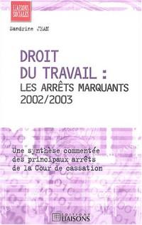 Droit du travail : Les arrêts marquants 2002/2003, une synthèse commentée des principaux arrêts de la Cour de cassation