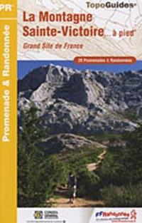 La Montagne Sainte-Victoire à pied : Grand Site de France