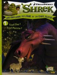 Shrek, les histoires de l'âne et du chat potté, Tome 1 : Tout feu ! Tout flamme !