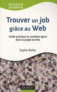 Trouver un job grâce au Web 2.0: Guide pratique du candidat égaré dans la jungle du Net