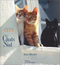 Agenda 2004 : Les Chats du Sud