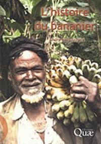 L'histoire du bananier