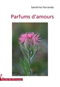 PARFUMS DAMOURS