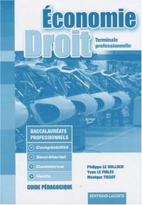 Economie et Droit Tle professionnelle Bac pro : Guide pédagogique