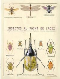 Insectes au point de croix