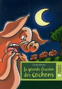 La grande évasion des cochons