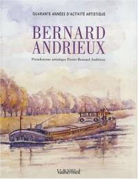 Bernard Andrieux : Quarante années d'activité artistique
