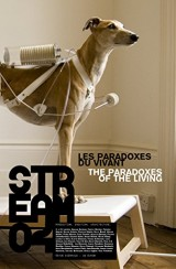 Stream 04 - les Paradoxes du Vivant