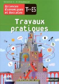 Sciences économiques et sociales Tle ES : Travaux Pratiques