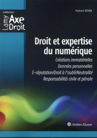 Droit et expertise du numérique : Créations immatérielles - Données personnelles - E-réputation - Droit à l'oubli neutralité - Responsabilités civile et pénale