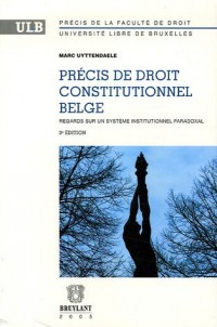Précis de droit constitutionnel belge : Regards sur un système institutionnel paradoxal