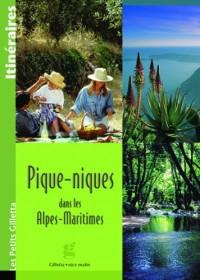 Pique Nique Alpes Maritimes