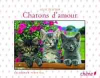 Calendrier perpétuel chatons d'amour