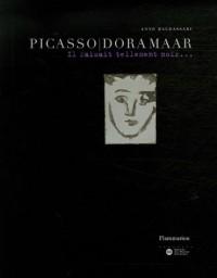 Picasso/Dora Maar : Il faisait tellement noir...