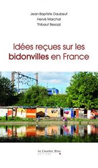 Idees recues sur les bidonvilles en France