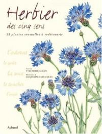 Herbier des cinq sens : 35 plantes à redécouvrir par les sens